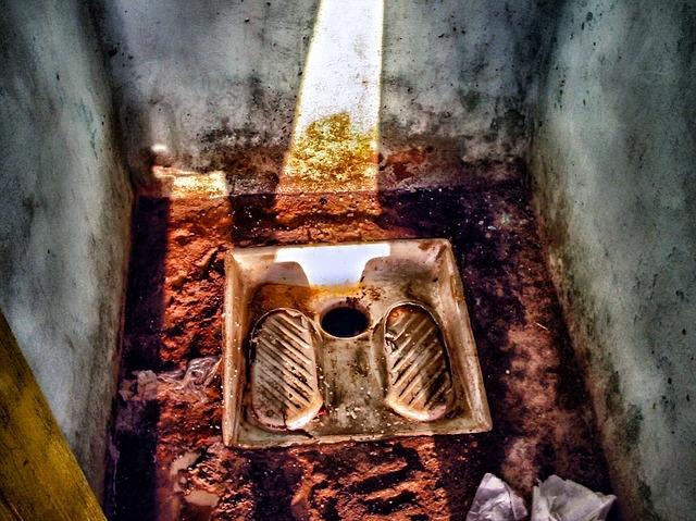 toilet-253941_640