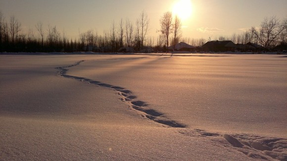 snow-259974_640
